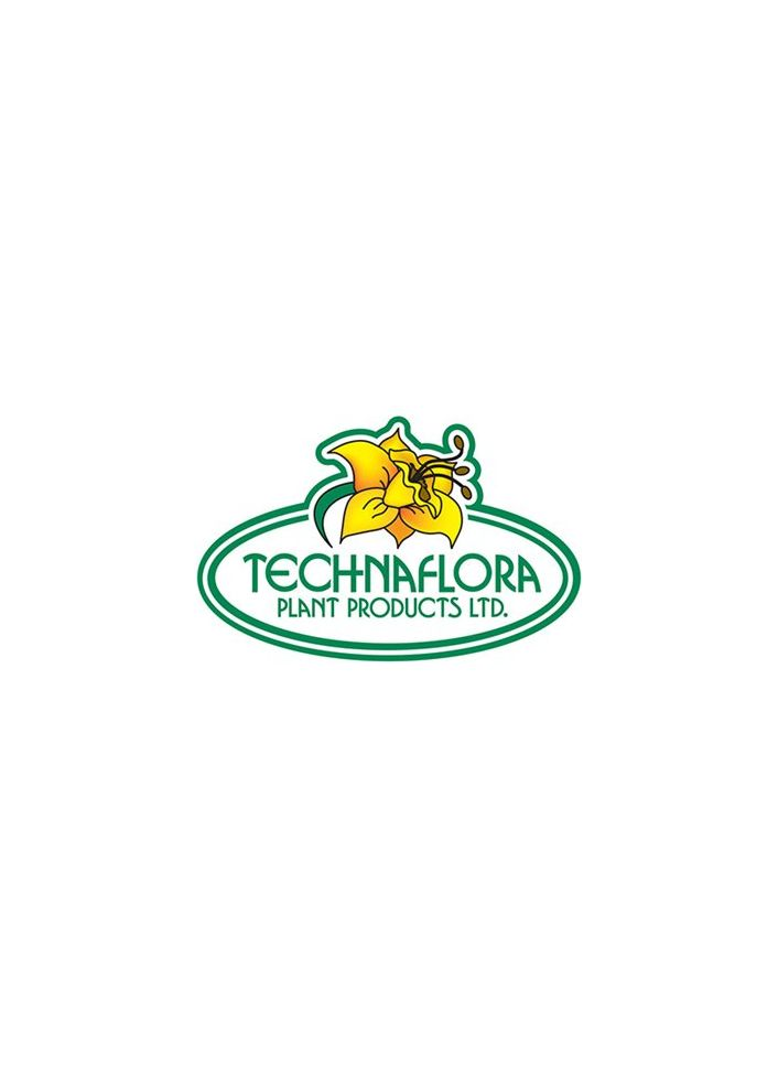 Technaflora b.c. bloom 1l
